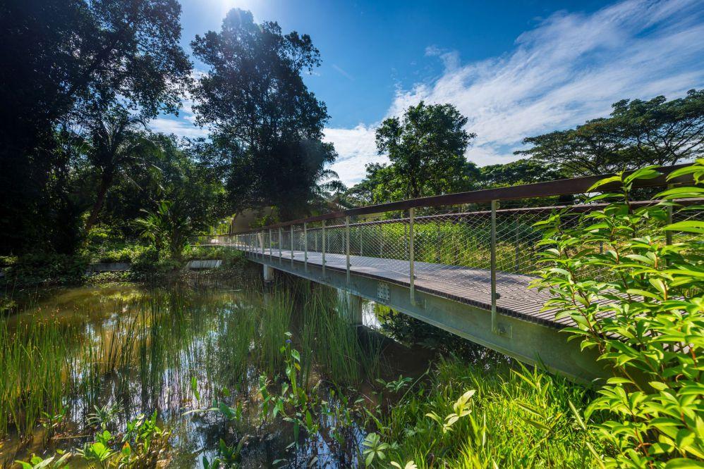 Enhancement Works at Windsor Nature Park - LEPL
