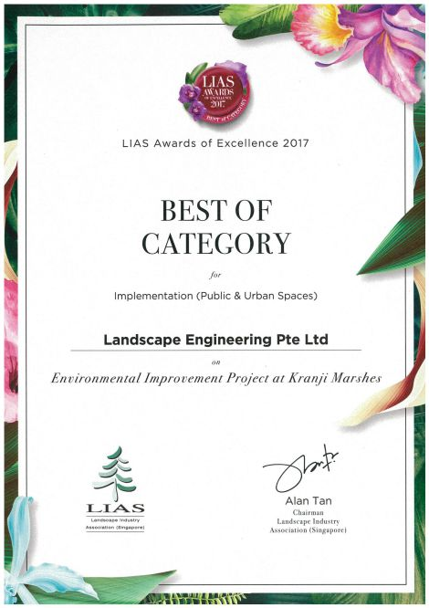 LIAS AWARDS OF EXCELLENCE 2017